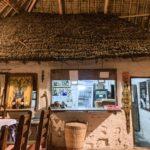 【DAY200・タンザニア】ザンジバル島へ🏝パラダイス ビーチ バンガローズに宿泊🐬