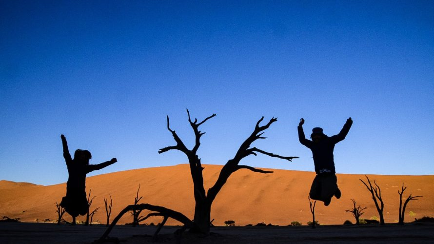 【DAY224・ナミビア】早朝のデッドフレイ&夕方のDune45が綺麗すぎた🏜