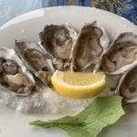 【DAY226・ナミビア】スワコップムントで生牡蠣を堪能&大砂丘Dune7へ