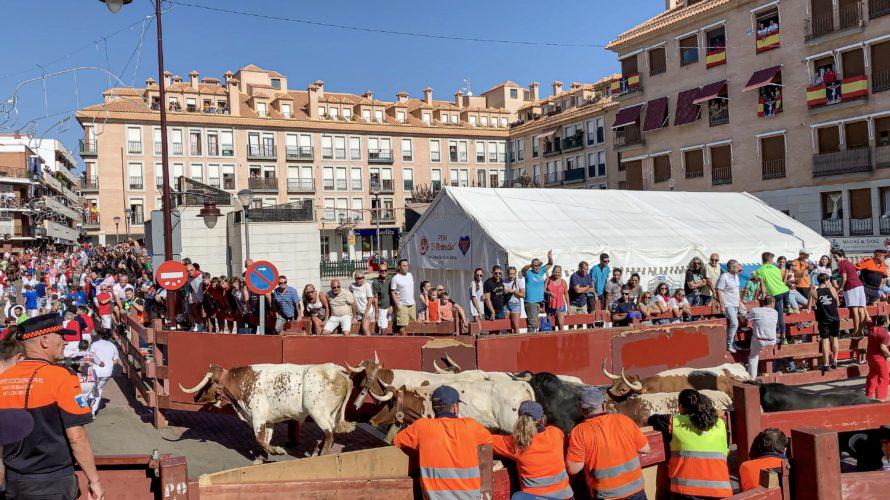 【DAY255・スペイン】マドリードの牛追い祭りへ🐂🐃🐄屋外シネマにて無料映画鑑賞🎬