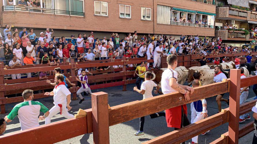 【DAY256・スペイン】牛追い祭り再び🐂🐃🐄