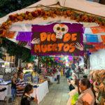 【DAY313・メキシコ】メキシコシティからオアハカへ🚌オアハカの街はガイコツで一杯💀