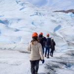 【DAY382・アルゼンチン】ペリトモレノ氷河の上をトレッキング!!そこは一面氷の世界❄️